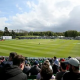 Ireland, Cricket Ireland, Pakistan, New Zealand