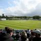 Ireland, Cricket Ireland, Pakistan, New Zealand